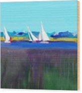 Norfolk Sails Wood Print