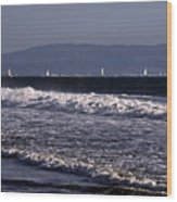 Sailing In Santa Monica Wood Print