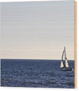 Sailing In Santa Monica II Wood Print