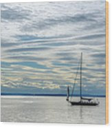 Sailing In Seattle Wood Print