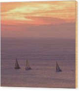 Sailing In The Golden Glow Wood Print