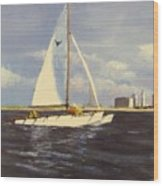 Sailing In The Netherlands Wood Print