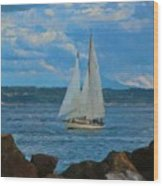 Sailing On A Summer Day Wood Print