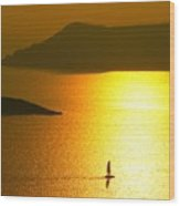 Sailing On Gold 1 Wood Print