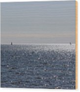 Sailing On Lake Pontchartrain Wood Print