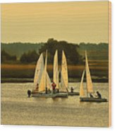Sailing Practice Wood Print