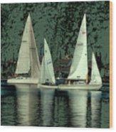Sailing Reflections Wood Print