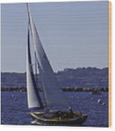 Sailing Stonington Harbor Wood Print
