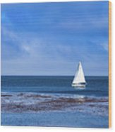 Sailing The Ocean Blue Wood Print