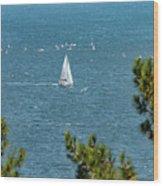 Sailing The Sea Of Marmara Wood Print