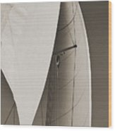 Sails Wood Print by Dustin K Ryan