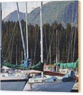 Sails Of Seldovia Wood Print