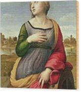 Saint Catherine Of Alexandria Wood Print by Raphael