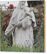 Saint Francis Statue In Carmel Mission Garden Wood Print