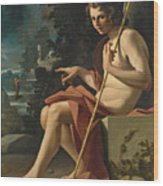Saint John The Baptist In A Landscape Wood Print