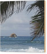 Saint Lucia Palm Tree Small Rock Caribbean Flowing Wood Print