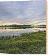 Saint Lucie Nature  Wood Print