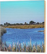 Saint Marks National Wildlife Refuge Lagoon Wood Print