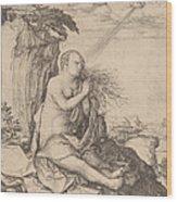 Saint Mary Magdalene In The Desert Wood Print