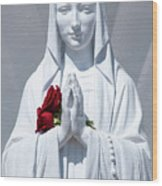 Saint Virgin Mary Statue #1 Wood Print