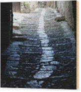 Sainte Enimie In France Wood Print