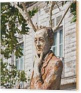 Sait Faik Memorial Wood Print
