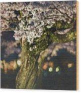 Sakura At Night Wood Print