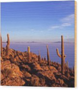 Salar De Uyuni And Cacti At Sunrise Wood Print
