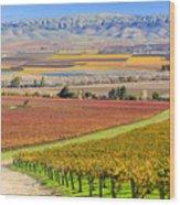 Salinas Valley Wood Print