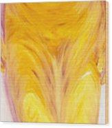 Salle De Bain IIi Wood Print