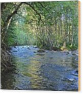 Salmon Creek Majestic  Wood Print by Tim Rice