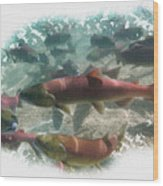 Salmon Migration Wood Print