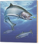 Salmon Painting Wood Print