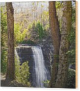 Salmon River Falls Wood Print