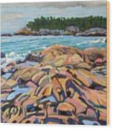 Salmon Rocks Wood Print