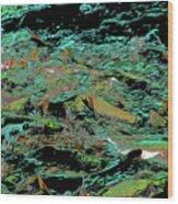 Salmon Run 10 Wood Print