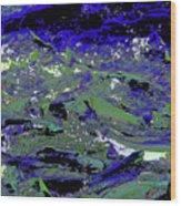 Salmon Run 5 Wood Print