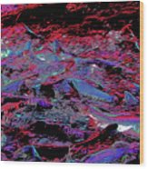 Salmon Run 8 Wood Print