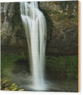 Salt Creek Falls 2 Wood Print