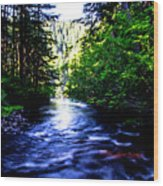 Salt Creek Falls Wood Print