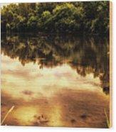 Salt Creek On A August Morning Wood Print