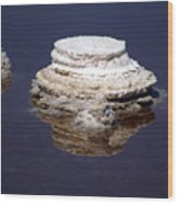 salt cristal at the Dead Sea Israel  Wood Print