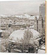 Salt Lake City Landmarks Wood Print