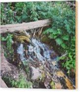 Mill Creek Canyon - Utah Wood Print