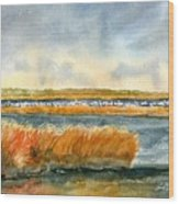 Salt Marsh And Snow Geese Wood Print