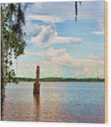 Salt Mine Disactor Monument Jefferson Island Louisiana  Wood Print