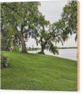 Salt Mine Reminder Accident  Louisiana  Wood Print