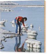 Salt Pillars In Dead Sea Wood Print