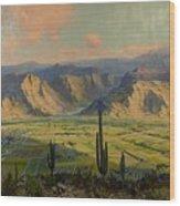 Salt River Irrigation Project - Arizona Wood Print