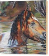 Salt River Tango Wood Print